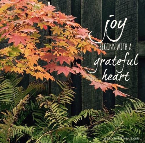 joy begins