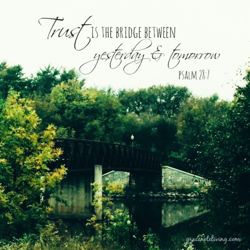 Trust is the Bridge